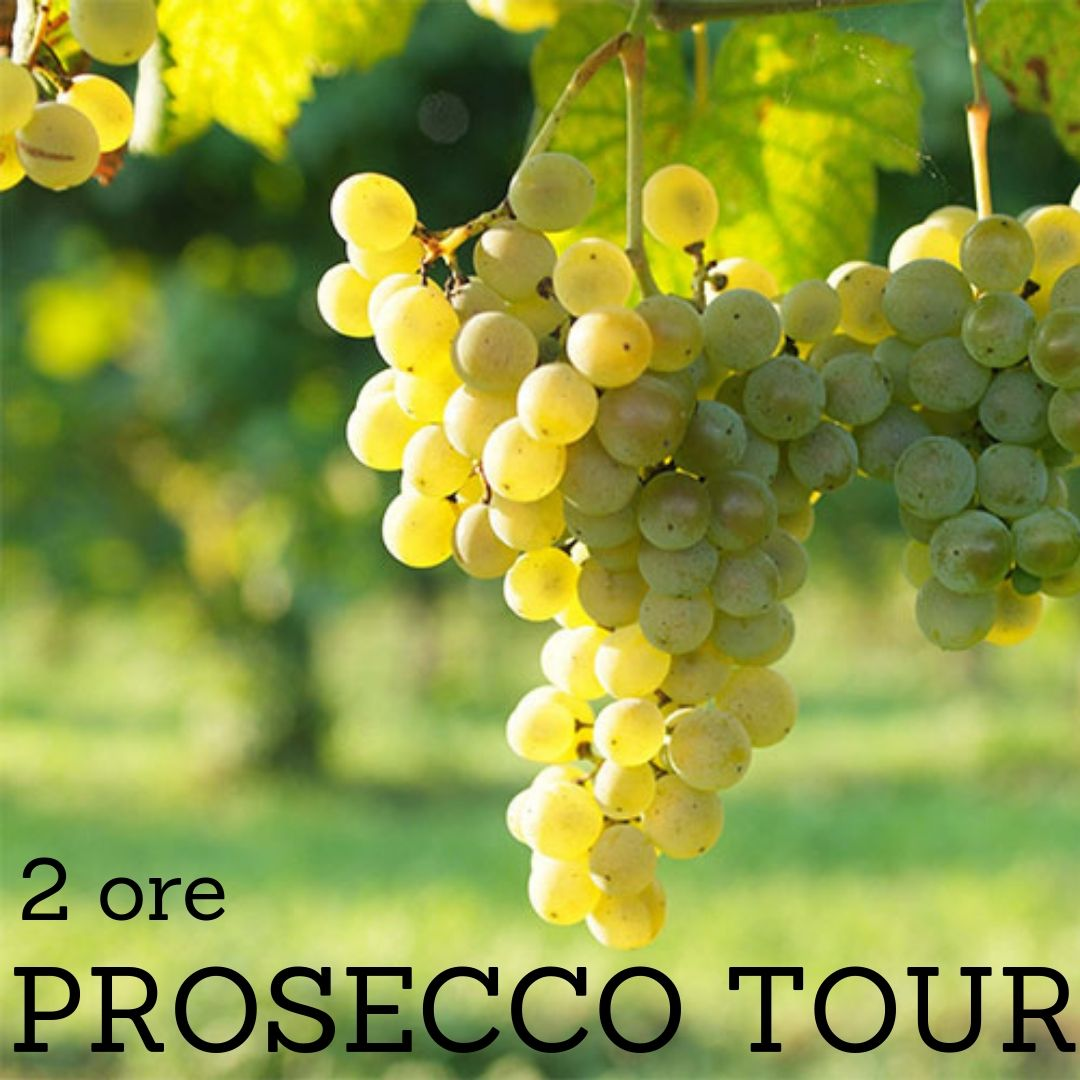 Copia di prosecco tour